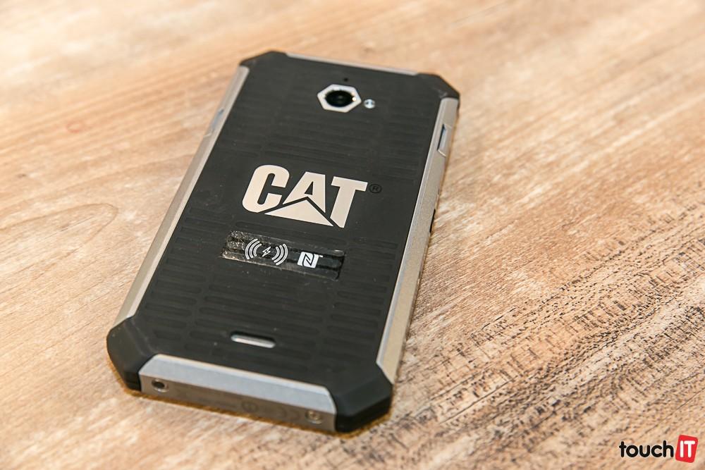 CATS50Stol2