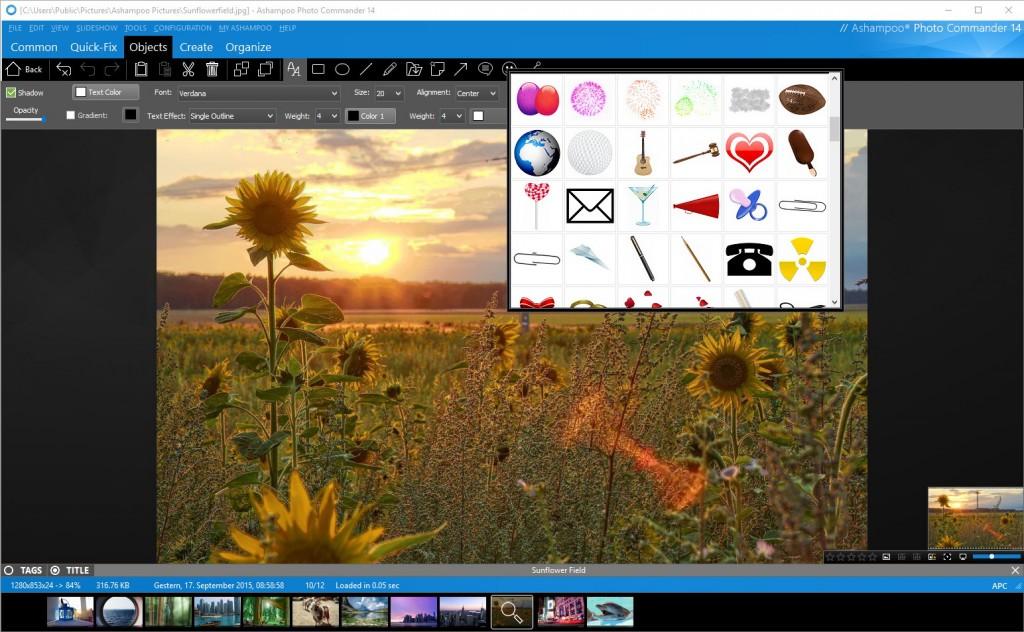 scr_ashampoo_Photo_Commander_14_objects-editor_nowat