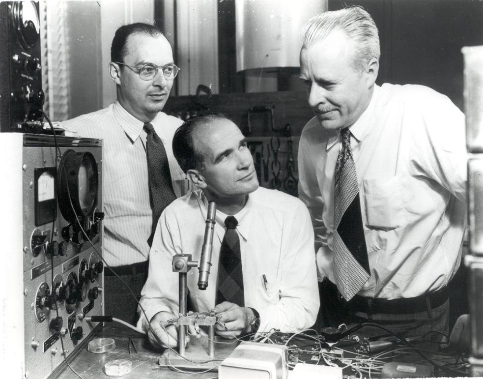 Tvorcovia prvého tranzistora: John Bardeen, Walter Brattain, a William Shockley (dole)