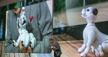 CES 2018  Sony predstavuje ponuku na rok 2018. Príde aj nová verzia  robotického psa aibo a8a5ba8a3c4