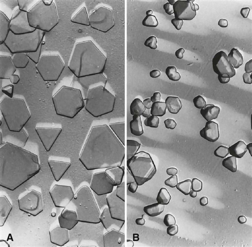 Kryštáliky halogenidov striebra na povrchu filmu, zachytené elektrónovým mikroskopom